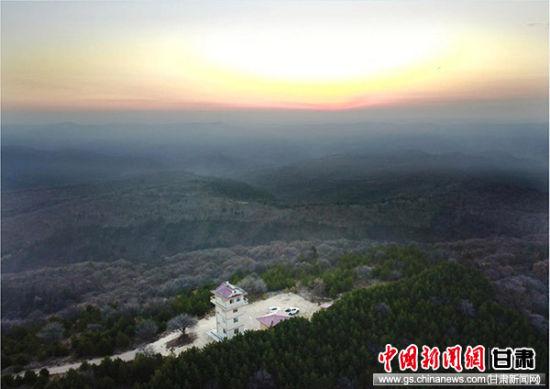 地处黄土高原腹地的子午岭,是甘肃庆阳重要的生态屏障,因其与本初