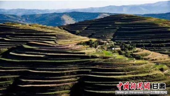 定西税务:发挥税收政策作用 守护耕地保护红线