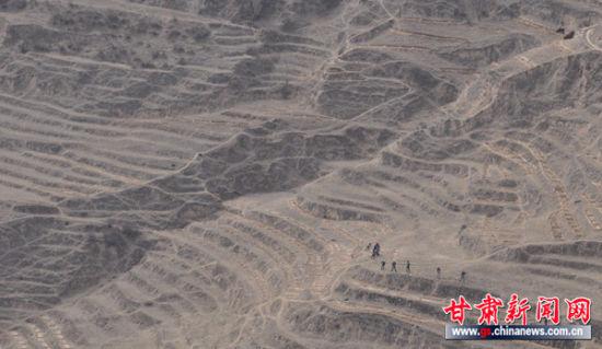 图:东乡县北岭乡开展林地整地工作